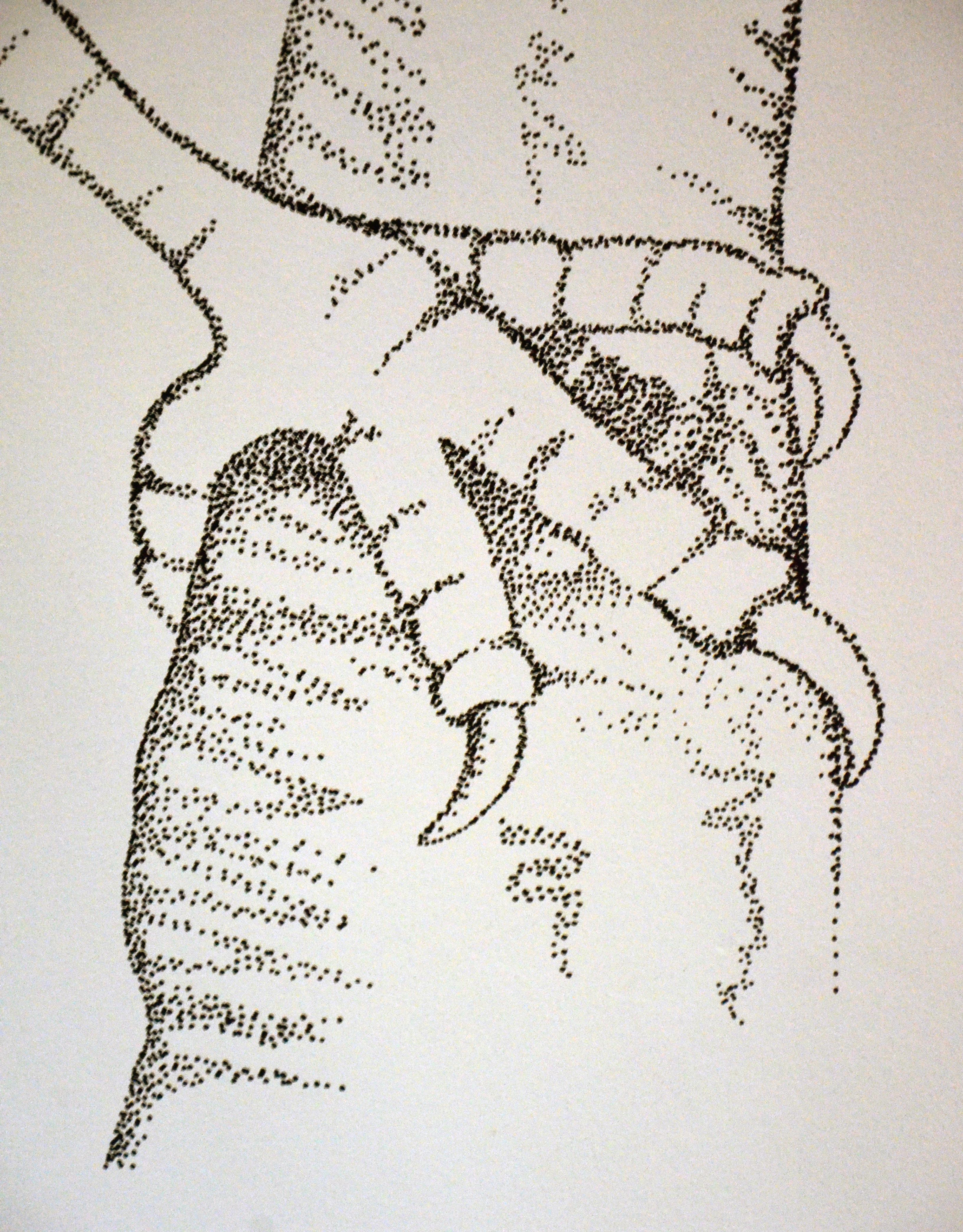 bird claw detail